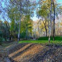 Осень в парке. :: Людмила Крюкова