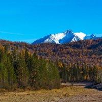 Тайга и горы :: Анатолий Иргл