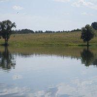 Озеро :: Оксана Бригеман