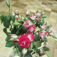 Натюрморт с розами :: Дмитрий Никитин