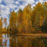 Осеннее озеро :: vladimir
