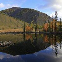 Пейзаж с отражением :: Владимир Собардахов