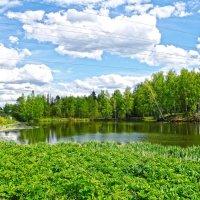 Русский пейзаж :: megaden774