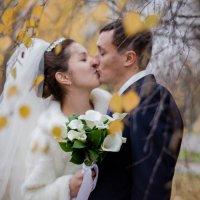 осенний поцелуй :: елена брюханова