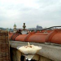 """""""Тирамису"""" в Праге :: Galina Belugina"""