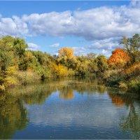 Жёлтые листочки плыли по воде…Осень :: Алла Allasa