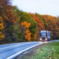 Осенняя дорога :: Vladik Tsetens