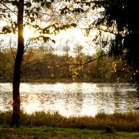 Озеро :: Елена Четверик