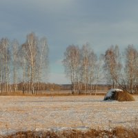 Первый снег. :: nadyasilyuk Вознюк