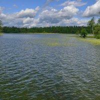 Озеро Валдай. :: kolin marsh