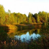 в тени у озера... :: Татьяна Шестакович