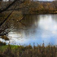 Затянуло пруд ледочком... :: Юрий