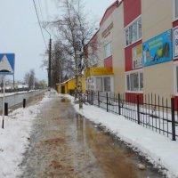 Оттепель в начале ноября :: Николай Туркин