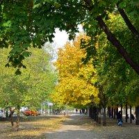 Осень в городе :: Николаева Наталья