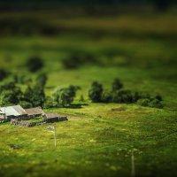 в деревне :: Дмитрий Сдобин