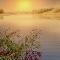 На реке-реченьке... :: Иван Солонинка