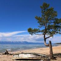 На берегу Байкала :: Оксана Демидова