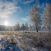 Утро ноября... :: Алексей Белик