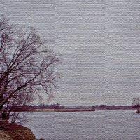Москва река (р-н Бронницы) :: Борис Александрович Яковлев