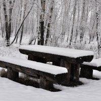Начало зимы. :: юрий Амосов