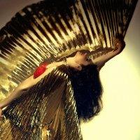 Танец с крыльями :: Елизавета Лосева