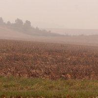 Там за туманами :: Dmitriy Stoyanov