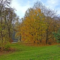 """""""Цветная осень — вечер года - Мне улыбается светло...."""" :: Galina Dzubina"""