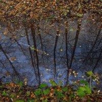 Небо под ногами :: Андрей Лукьянов