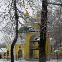 Взгляд на церковь через призму леса :: Владимир Максимов