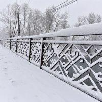 В зимнем парке :: юрий Амосов