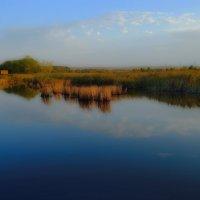 Придорожный пейзаж на закате :: M Marikfoto