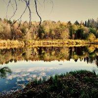 осень на реке Пушме :: ВладиМер