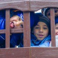 Беззаботное детство :: Андрей Куприянов