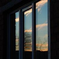 закат в окне :: linnud