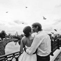 Любовь и голуби.. :: Светлана Гостева