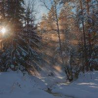 Зима пришла :: vladimir Bormotov