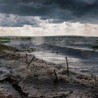 Летний шторм :: Дмитрий Нестеров
