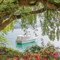 Тихая гавань :: Fotochka Я