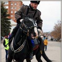 Конь мой вороной :: Андрей Заломленков