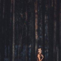 свет в лесу :: Константин Гусев