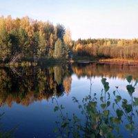 осенний пруд :: ВладиМер