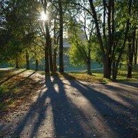В кремлевском парке осенью (этюд 11) :: Константин Жирнов