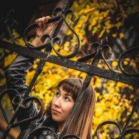 Осень в чёрно-жёлтых тонах :: Александр Гоман