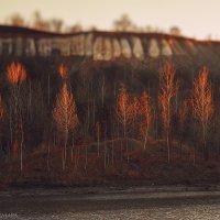 Осень :: Марк Шишкин