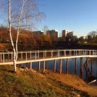 Солнечный день в ноябре - почти чудо :: Андрей Лукьянов