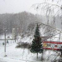 Была зима ...в начале ноября . :: Мила Бовкун