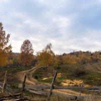 Осенние Карпаты :: Сергей Форос