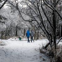 Прогулка в парке Магадана. :: Юрий Харченко