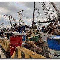 В морском порту Чивитавеккьи. :: Leonid Korenfeld