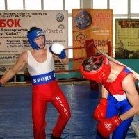 «Кубок РБ по Фр.Боксу 2006г.» :: arkadii